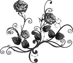 die schönen rosen blog gesellschaftskritik radikalfeminismus anarchismus anarchafeminismus